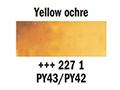 ������� ��� ��� 1/2pan,yellow ochre