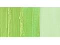 ����� ������ ���� 37��,�.3,yellow-green dyna N:364