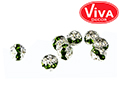 �������-�������� � ������,8��,silver-smaragd,2��.