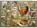 Michelangelo,50�70��,100��,1�.